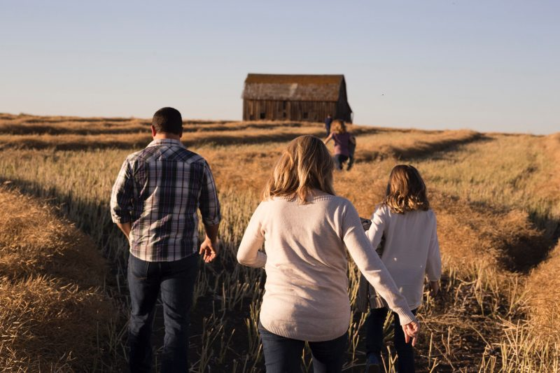 family wheel of life